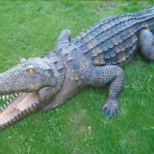 Fiberglass Crocodile
