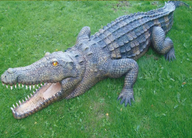 Crocodile of Fiberglass