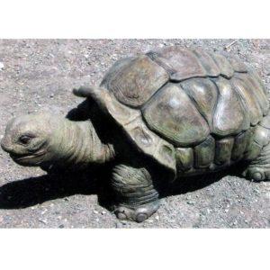 Fiberglass Tortoise