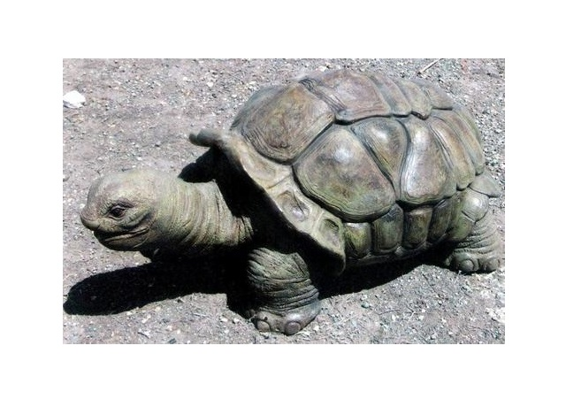 Fiberglass Tortoise