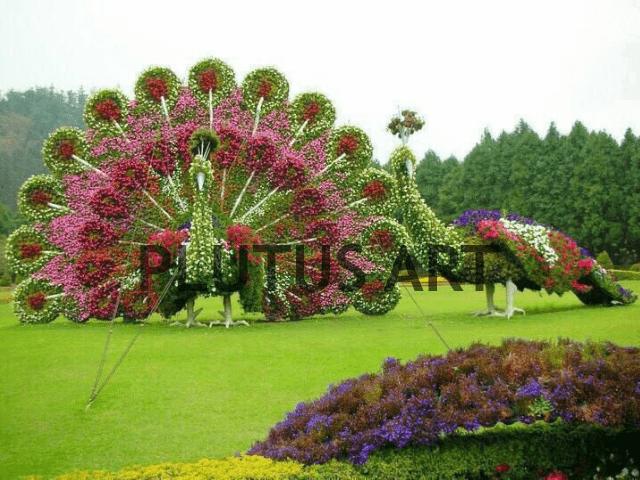Fiber Grass designed peacock Statues